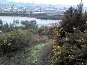 cerro conun huenu